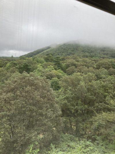 キゴ山です