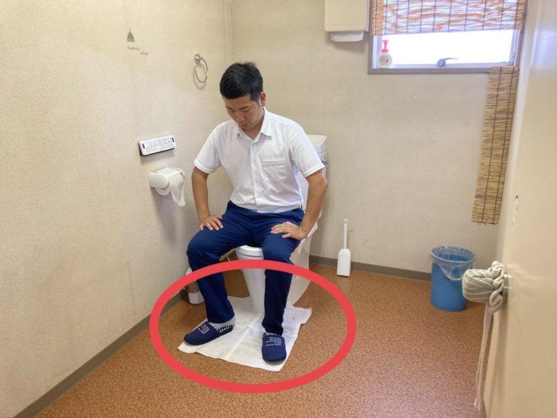 トイレに流せるマットシートです
